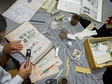 Wie ontcijfert eeuwenoud mysterieus Voynich Manuscript?