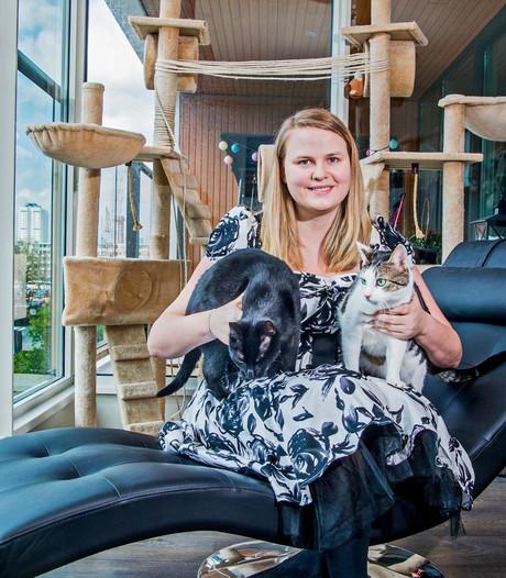 Eerste Rotterdamse kattencafé geopend