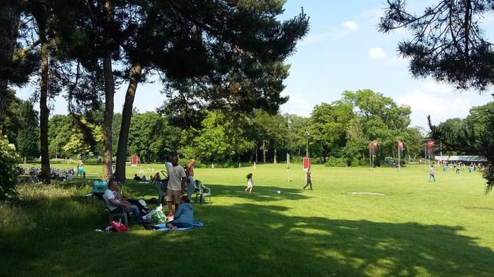 Zonder ticket genieten van FortaRock in het park. Foto DG