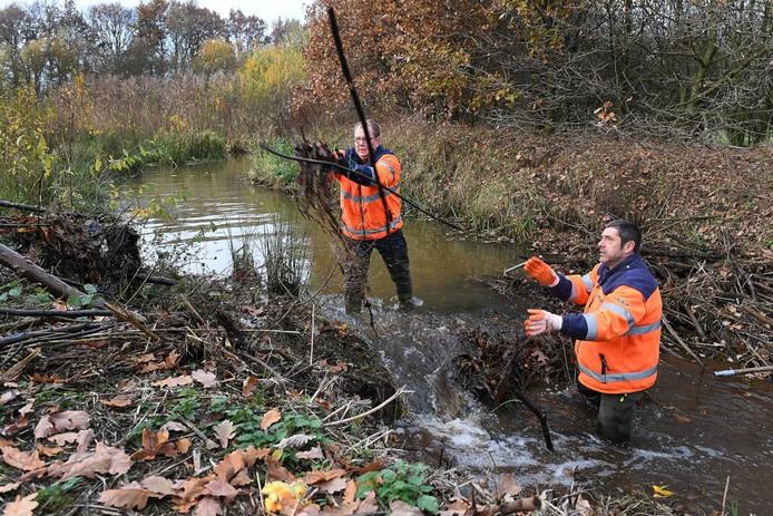 Jos van Krijl en Eric van Boxmeer van waterschap Aa en Maas aan de slag in de beverdam.
