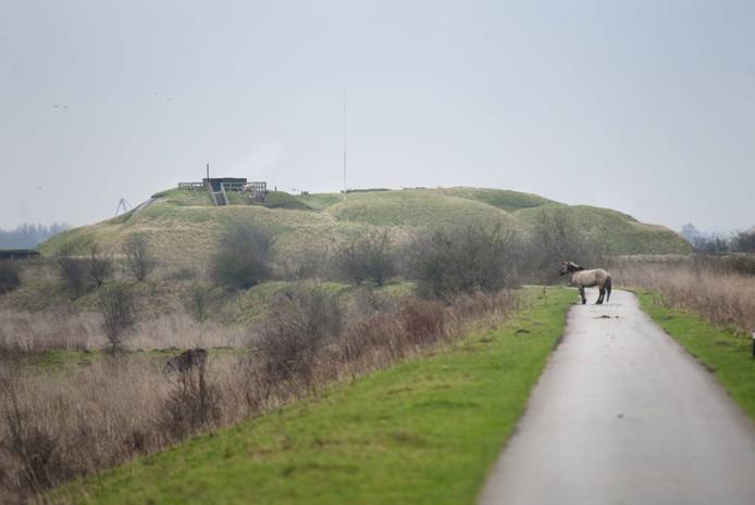 De weg naar Fort Pannerden in Doornenburg. Foto: Rolf Hensel