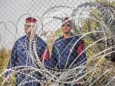 Hongarije bouwt tweede hek tegen migranten bij grens Servië