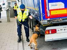 Zorgen om toestroom illegale vluchtelingen in Hoek van Holland