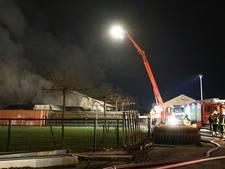 Raadslid GroenLinks wil dierenstallen brandveiliger