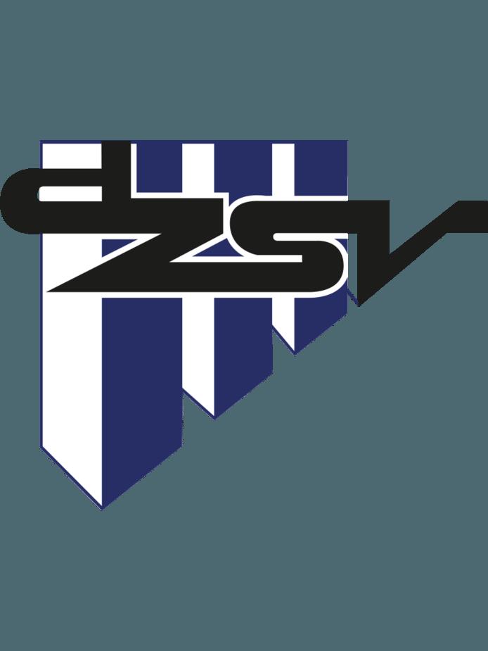 DZSV Logo