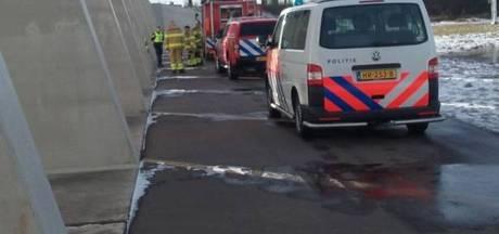 Hulpdiensten redden zwaan Pannerden