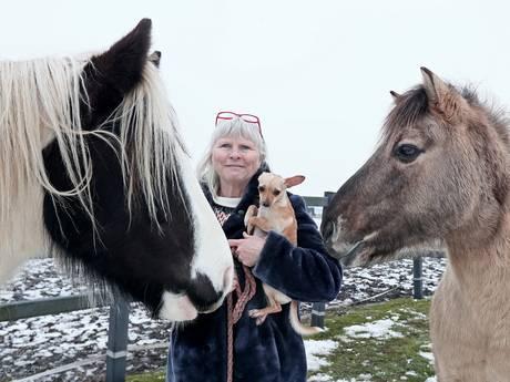 Nieuw thuis voor verweesde dieren na emotionele oproep op Facebook