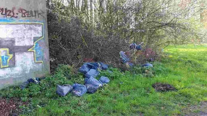 Hennepafval dat werd aangetroffen door de boa's in park Lingezegen.