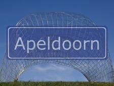 Steen gaat door autoruit in Apeldoorn