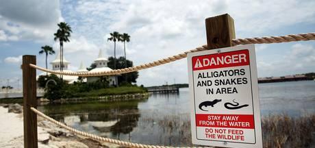 'Alligator sleurde kleuter in Disneyworld mee aan zijn hoofd'