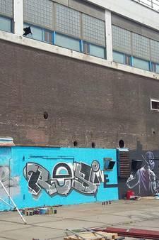 'Grootste graffiti-kunstwerk van Nederland' in Rotterdam