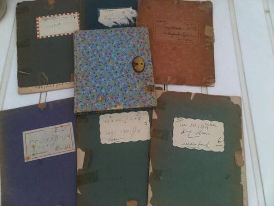 De dagboeken van Carry Ulreich
