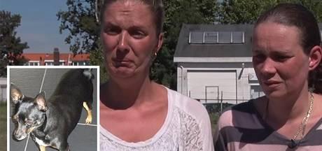 Haarlemse slaapt met deur open vanwege vermiste hond