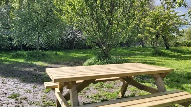 Gemeente Haacht vraagt inwoners om mee na te denken over locaties voor nieuwe banken en picknickbanken