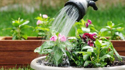Waterbedrijven vragen om verstandig om te gaan met water bij hitte