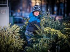 Dág Kerst! Laatste kans om boom aan de straat te zetten