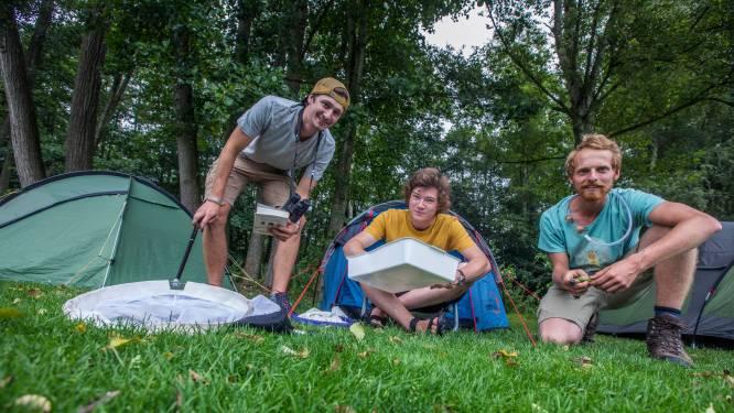 Natuurjongeren op zomerkamp: 'Den Haag is in vergelijking met Rotterdam ontzettend groen'