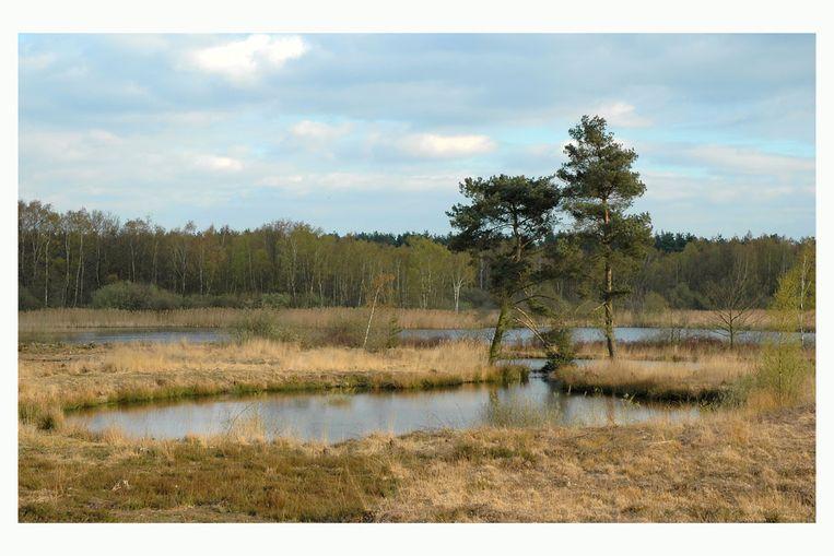 Natuurgebied De Maten in Limburg.
