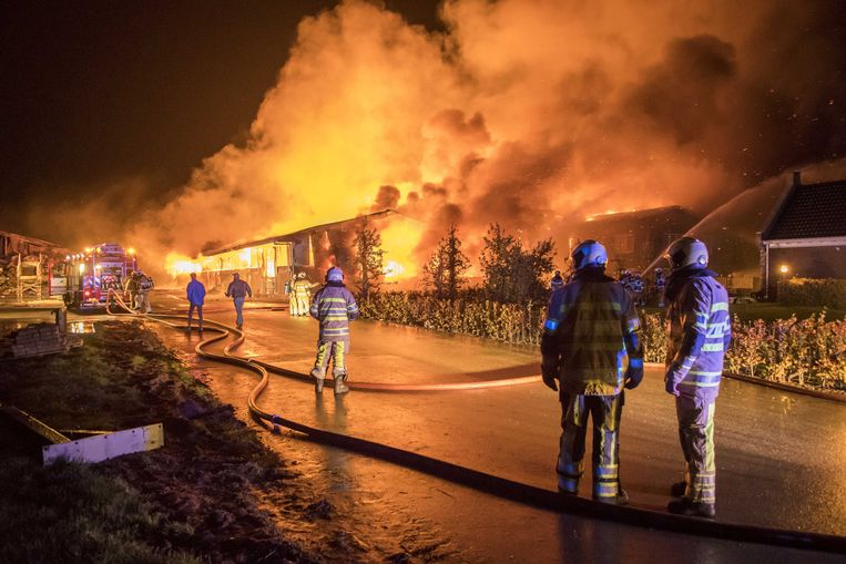 Bij een boerderij in Werkhoven is voor de derde keer in korte tijd brand uitgebroken. De loods was niet meer te redden. De koeien die in de stal stonden zijn omgekomen.  Beeld ANP / Koen Laureij