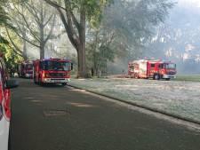"""Brandweer moet uitrukken voor aangestoken brand op Blaarmeersen: """"Maak geen kampvuur in deze hitte"""""""
