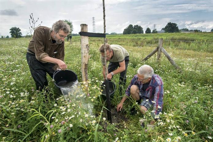 Vrijwilligers aan het werk in voedselbos De Parkse Gaard.