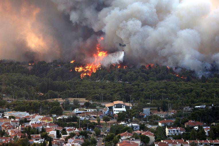 Een helikopter blust een brand in Varybobi, een voorstad in het noordoosten van Athene. Beeld EPA
