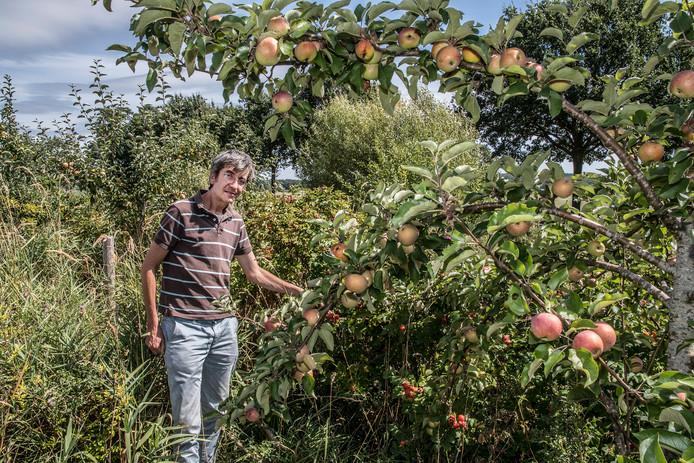Wouter van Eck in zijn voedselbos. Archieffoto