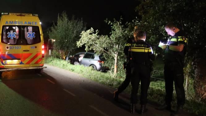 Automobilist raakt van de weg en klapt op boom in Lunteren