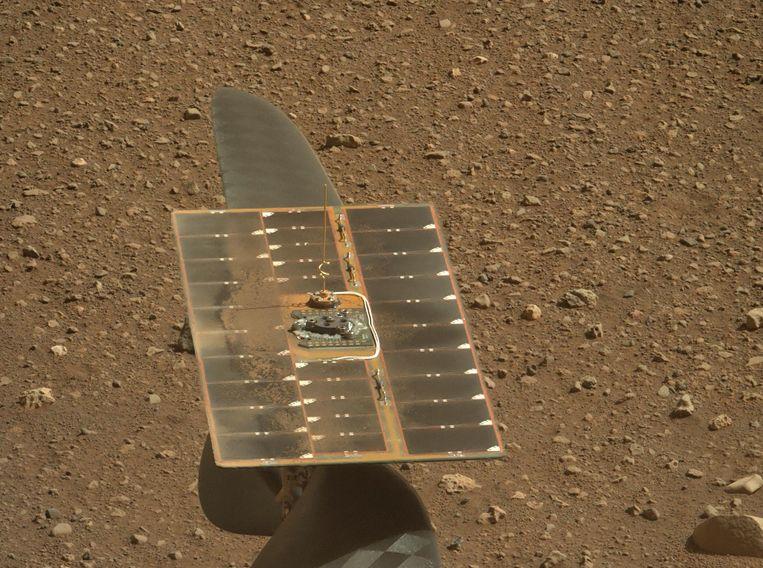 Een close-up van het zonnepaneel van het Mars-helikoptertje Ingenuity.  Beeld AFP