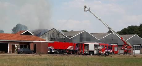 Vier korpsen bestrijden grote brand in Geesteren