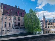 Mooiste zicht van Brugge zoekt gierzwaluwen die er willen broeden