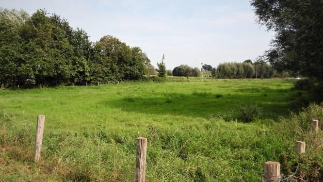 Natuurpunt plant ruim 1.500 nieuwe bomen in Groenhovevallei