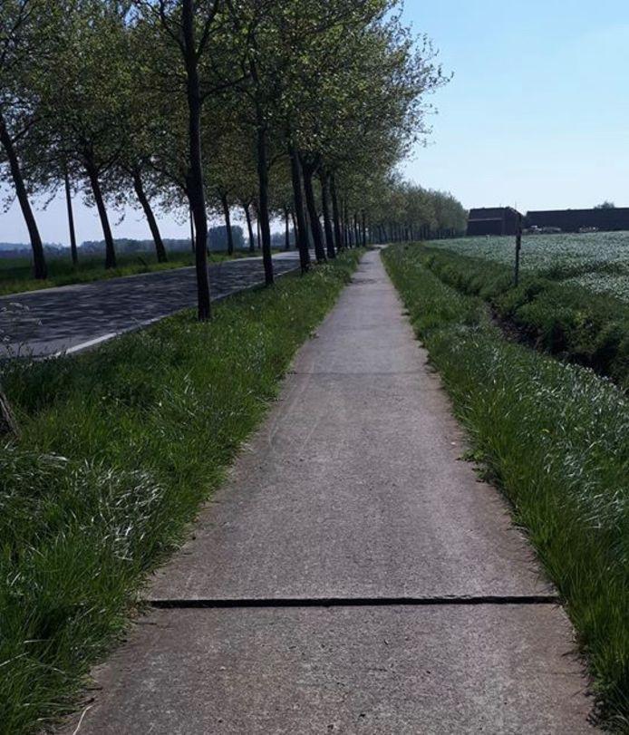 Het ongeval gebeurde op het fietspad langs de Kemmelseweg in Ieper, waar een betonplaat door de warmte omhoog geschoten is.