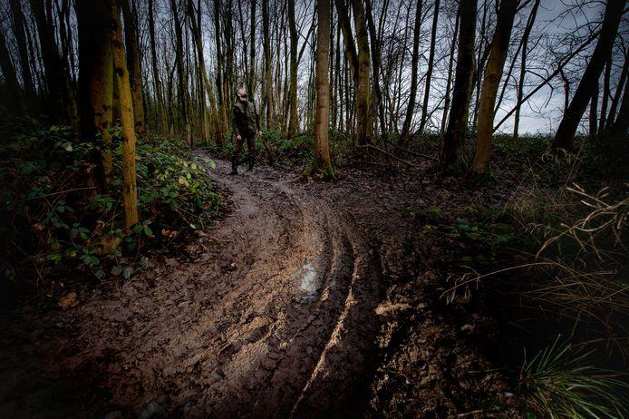 Boswachter Thijmen van Heerde inspecteert het bos, nadat het afgelopen weekend weer doelwit was van motorcrossers. 'Het is maar de vraag of de bonte specht hier terugkeert.'