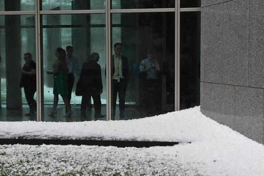 Hopen hagel bij het parlement in Canberra, Australië.