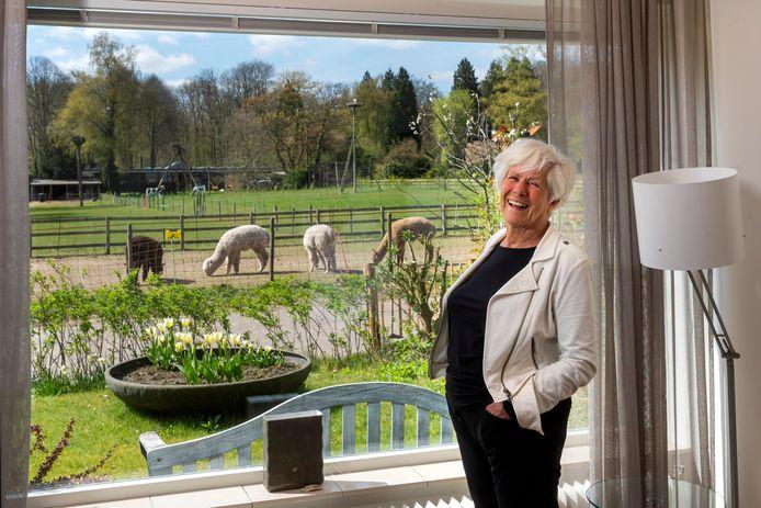 Joop Markink woont tegenover een weitje waar steeds meer te zien is: pony's, alpaca's, geiten, emoes. En zelfs het ooievaarsnest in weer in gebruik.