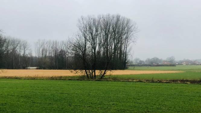 """Op huizenjacht in... Glabbeek: """"Kadastraal inkomen en gemeentebelastingen zijn laagste van de streek"""""""