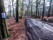 'Bomen verdwijnen bij bosjes': operatie op Tilburgs landgoed Heidepark wekt woede