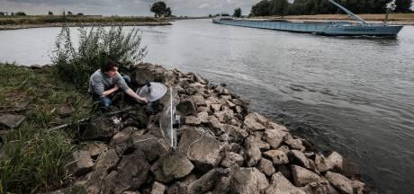 Justin en Roelf ontrafelden het geheim van het IJsselgeluid