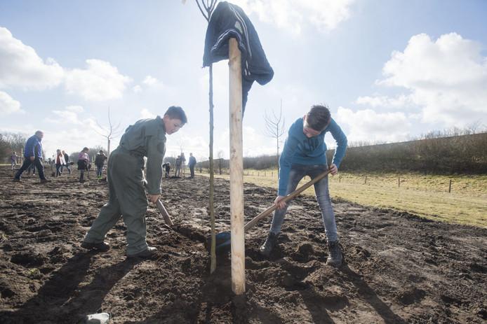 Jongeren planten bomen in Wierden.