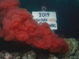Un égout déverse du sang contaminé dans l'océan depuis deux ans au Canada