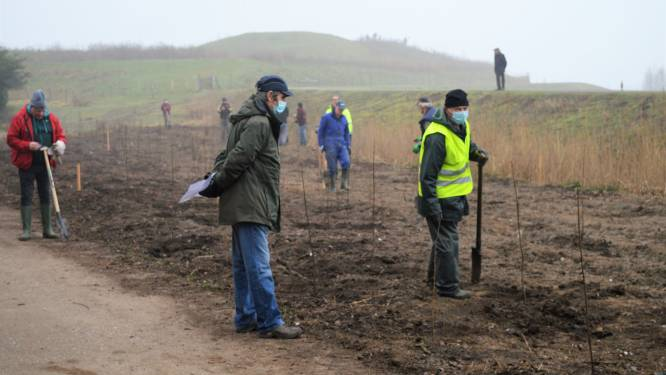 320 bomen en struiken aangeplant langs jaagpad Scheldelei