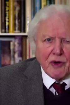 Sir David Attenborough met en garde les dirigeants du monde contre le changement climatique