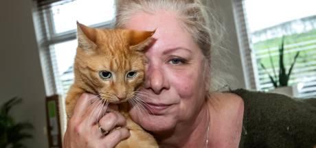 Huisdierenbezitter dreigt zich vast te ketenen in huis  tijdens ruiming V1 bom: 'Ze hebben me nodig'