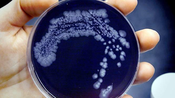 Legionella-besmetting nog niet onder controle: verboden te douchen in 5 Hengelose sporthallen