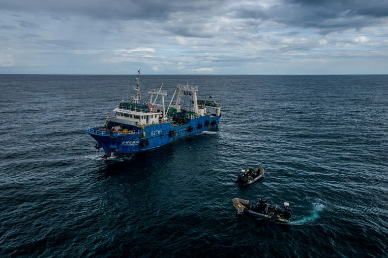 Snelle rubberboten van de maritieme natuurbeschermingsorganisatie Sea Shepherd volgen een groot Chinees vissersschip in de wateren voor Gambia, die daar leeggevist worden door Chinese vissersschepen.  Beeld Fábio Nascimento/The Outlaw Ocean Project
