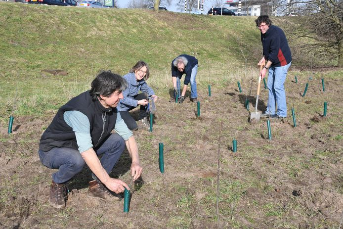 Een deel van de vrijwilligersgroep die de aanplant van de Bruistensingel aan de Heiniszijde heeft gerealiseerd. Op de voorgrond kartrekker Maurits Tax, lid van de Werkgroep Natuur op Noord.