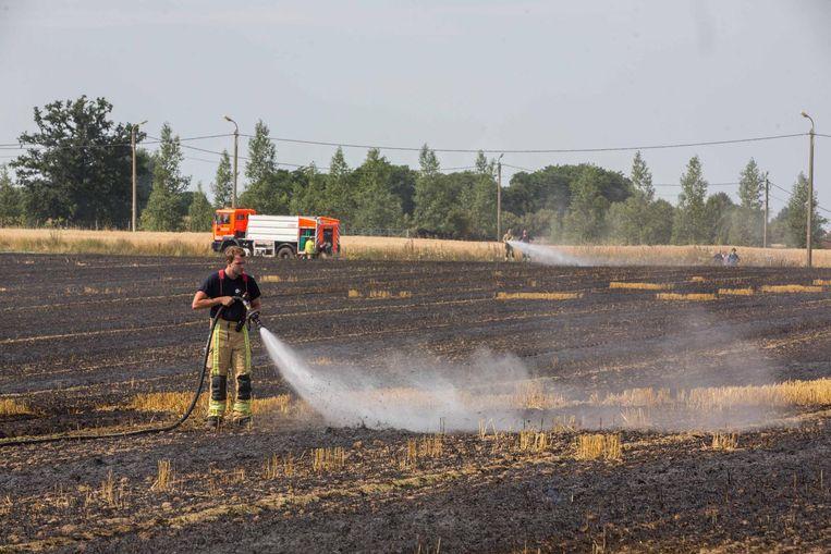 De brandweer had de handen vol om het brandende veld te blussen.
