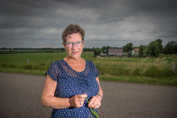 Eveline Van Elk