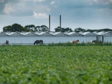 Deze plek in Etten-Leur is in beeld voor experiment met hennepteelt